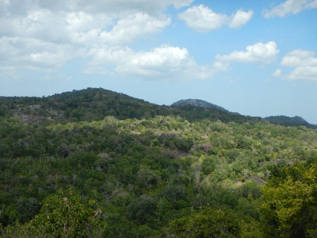 密林は展望が利かず、GPSも使えない。岩の丘に登って、ようやくタラグルヘラの姿をとらえた。