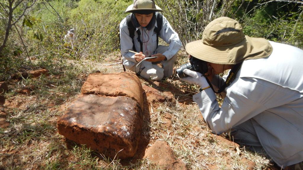 仏塔跡の装飾煉瓦を調べる調査隊員。