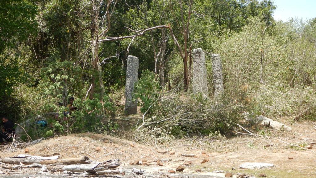 布薩堂跡と思われる石柱群。